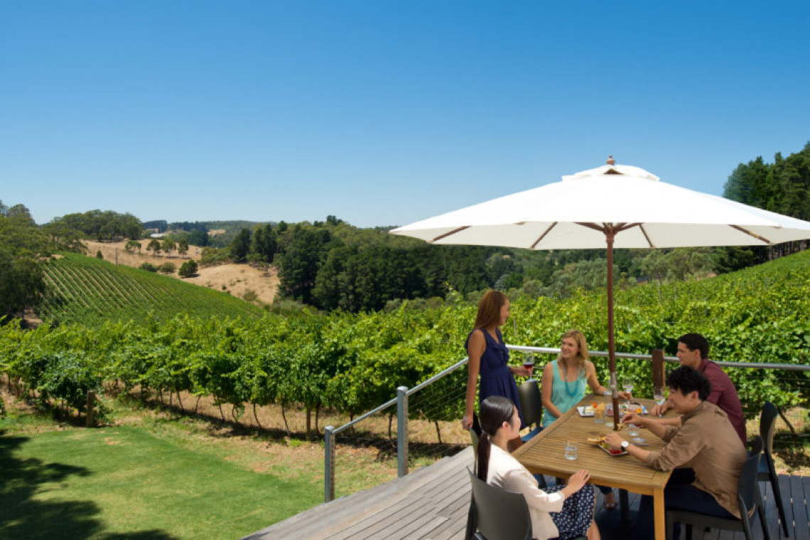 mt-lofty-ranges-vineyard-adelaide-hills-sa