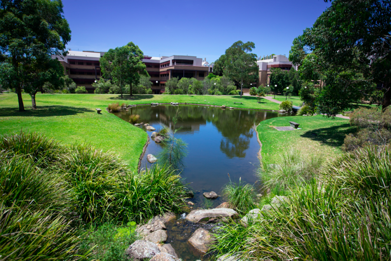 university-of-wollongong-lake